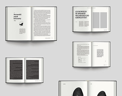 """Graphic design of the book """"Harry Potter"""""""