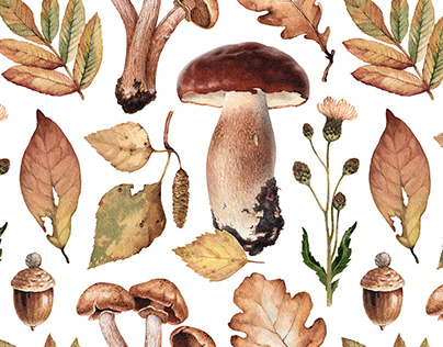 Watercolor illustrations of mushrooms and leaves