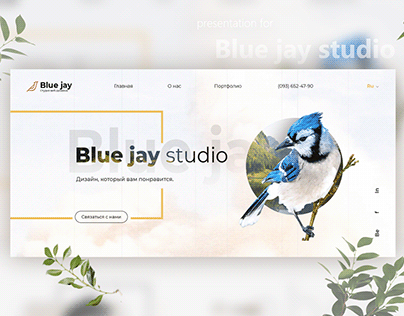 Website for Blue jay studio