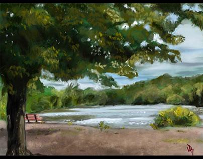 Saddle River Duck Pond