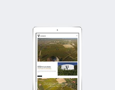 Venea - Responsive web site