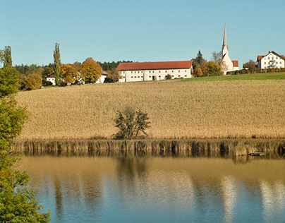 Yellow autumn, yellow lens | Upper Bavaria