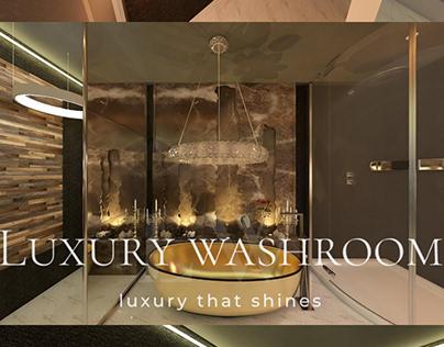 Luxury Washroom