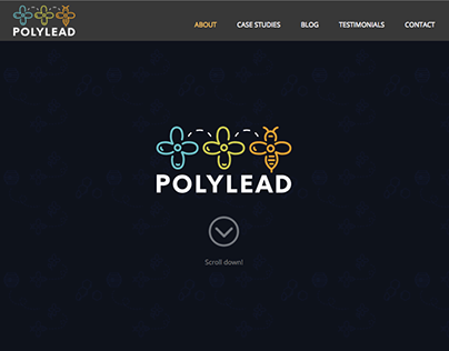 Polylead