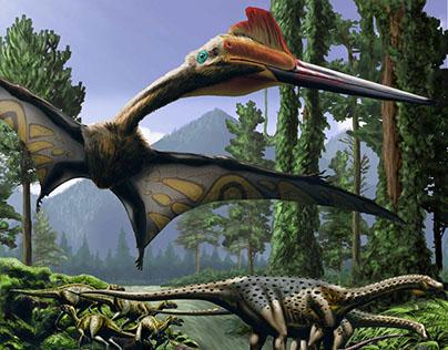Cretaceous in the Hațeg region