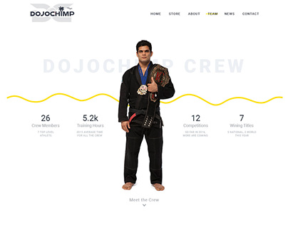 DojoChimp website