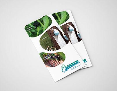 Agrodor Flyer Design