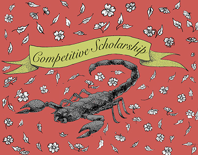 Competitive Scholarship 2017