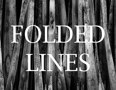 FOLDED LINES