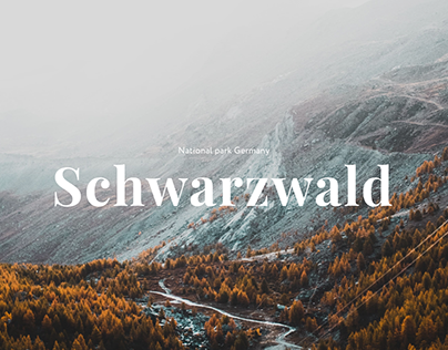National park Schwarzwald