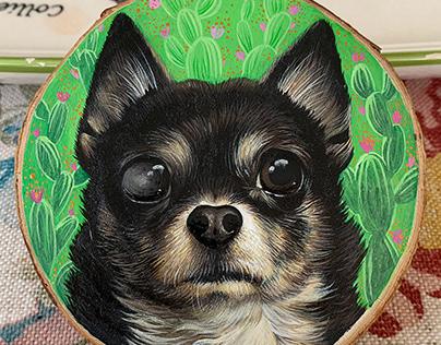 Chihuahua Busia