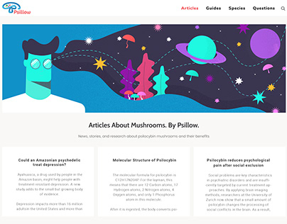 Project Illustrations and Graphics for Psillow