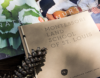 Chesterfield Montessori Land School Branding