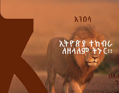 Amharic Fonts Preview