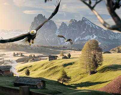 Eagles - Image Manipulation