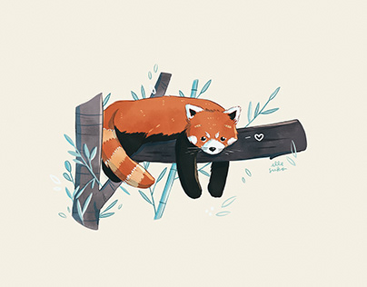 Sleepy Red Panda Illustration