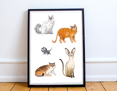 It's all about... cats!