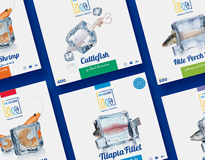 SeaCub Full Branding