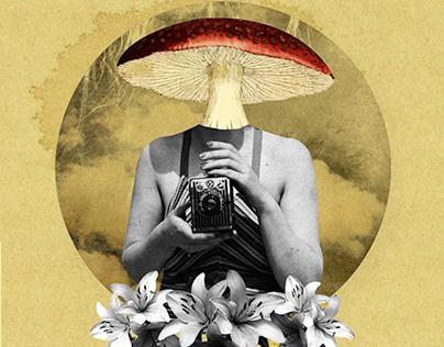 Somos vaivén / Collage digital
