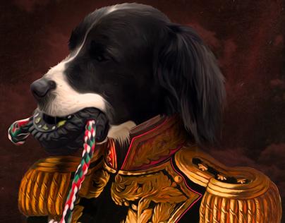 Pet portraits 2