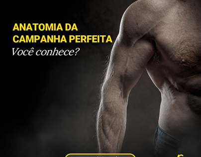 Carrossel Anatomia da Campanha Perfeita