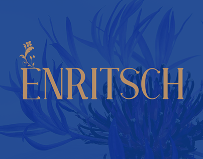 Enritsch - Identity