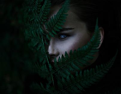Eye Behind Green's / Photo Animation