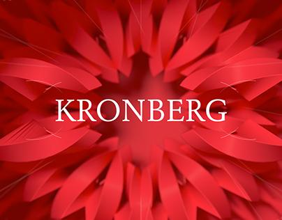 The Secret of Kronberg