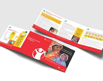 Newborn Survival in Pakistan- Flyer