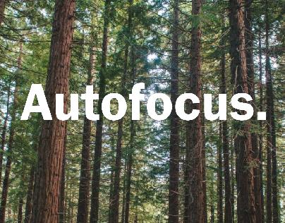 Autofocus Flyers