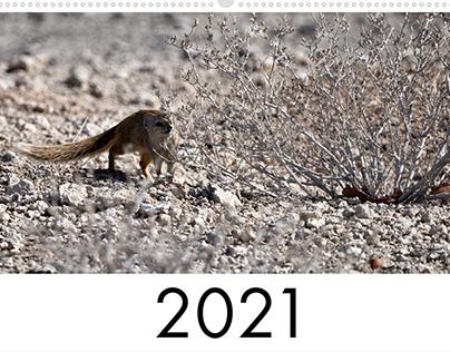 Kalender 2021 (Tiere)