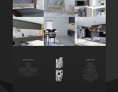 Evolution Webdesign Project