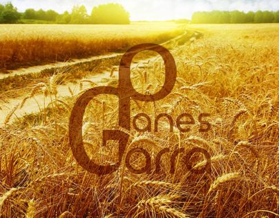 Diseño completo de marca para Panes con Garra