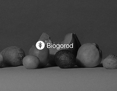 Biogorod Brand Identity