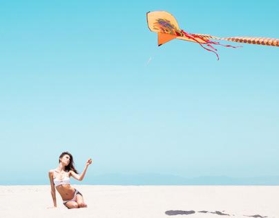Beach Kite