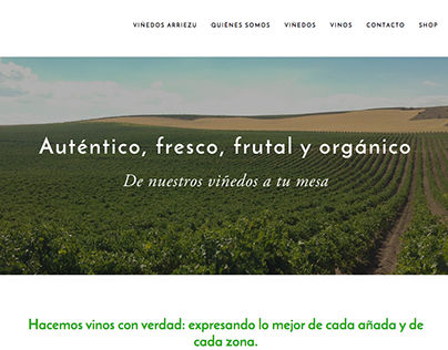 Web design: Arriezu.com