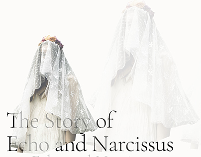 The Story of Echo and Narcissus poster