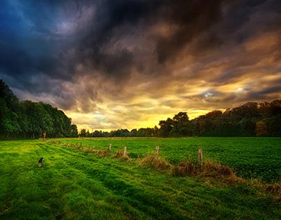 Walk on a green field