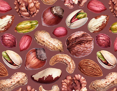 Nuts. Illustrations and pattern designs
