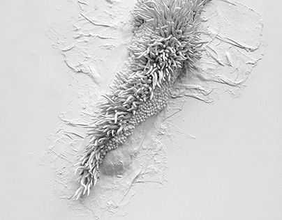 L'Infini Turbulent Clay artworks & installations