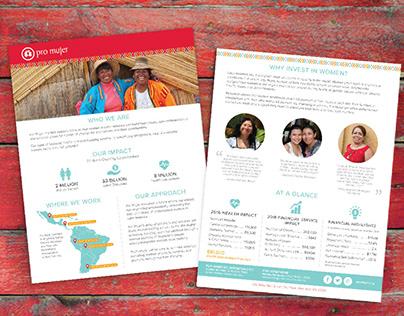 Pro Mujer Brochure Design