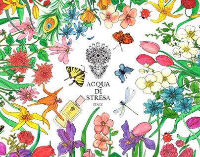 "Restyling of ""Acqua di Stresa"" Eau de Parfum"
