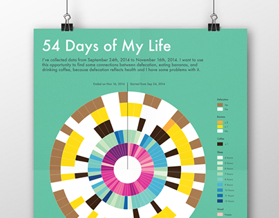 Data Visualization: 54 Days of My Life