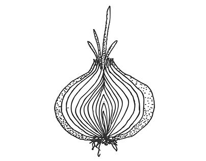 le potager de lita / jar branding