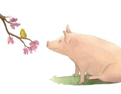 Pig and Bird