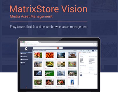 MatrixStore Vision Web-based Interface