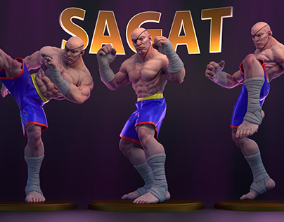 Sagat WIP