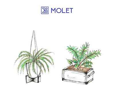 Green b'shvat //Product illustrations