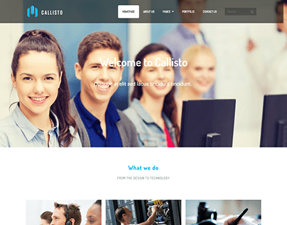 Call center website / Service website