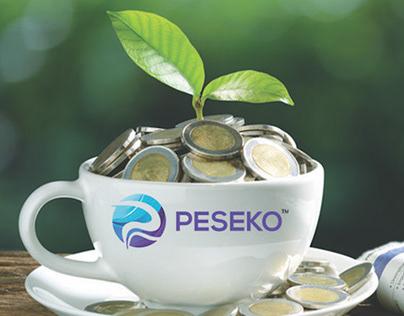 Finance - Peseko